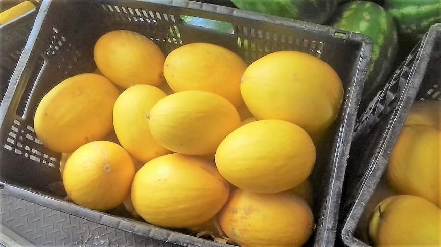 """Prefeitura distribui mais de 6 toneladas de alimentos """"innatura"""""""