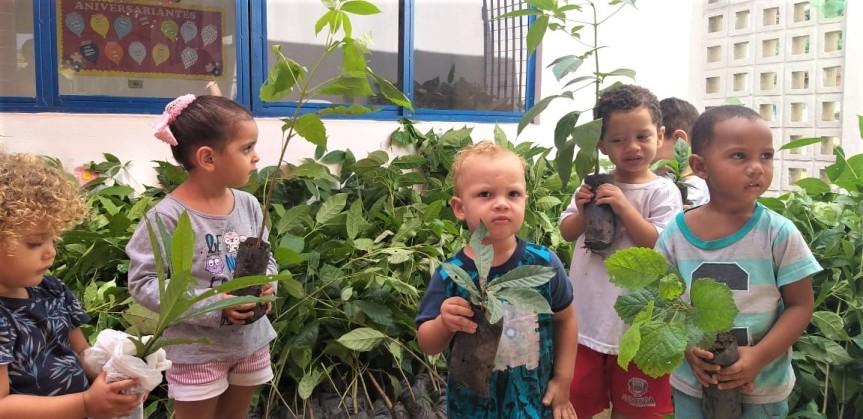 1.000 mudas de plantas nativas chegam para plantio emEscada